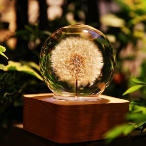 dandelion nightlight